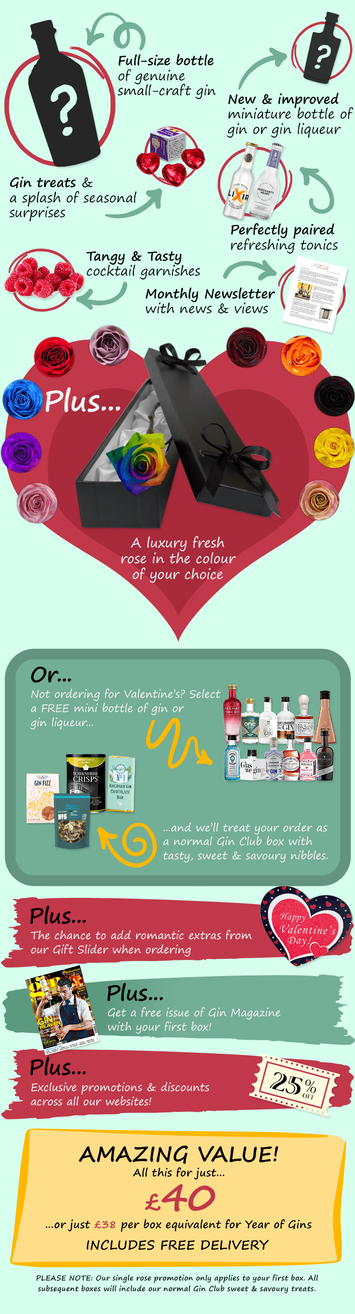 Valentine's Day Gin Club contents