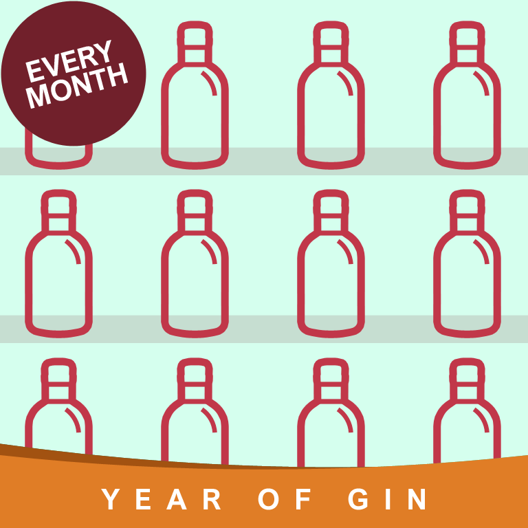 Year of Gin Gift every Month