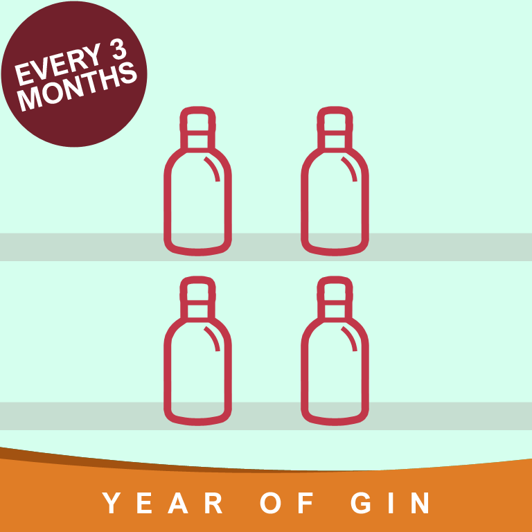 Year of Gin Gift every 3 Months
