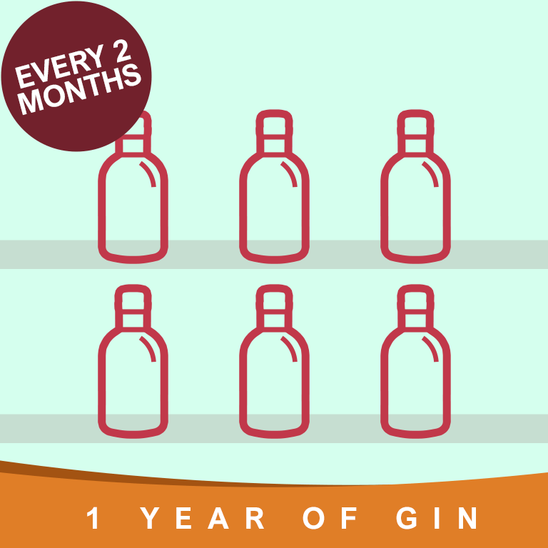 Year of Gin Gift every 2 Months
